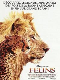 sortie dvd felins - le royaume du courage