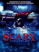 affiche sortie dvd scary