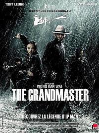 affiche sortie dvd the grandmaster
