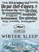 affiche sortie dvd winter sleep