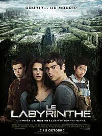 affiche sortie dvd le labyrinthe