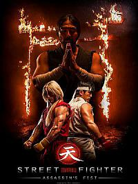 affiche sortie dvd street fighter: assassin's fist