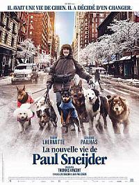 affiche sortie dvd la nouvelle vie de paul sneijder