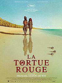 affiche sortie dvd la tortue rouge