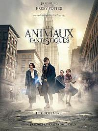 affiche sortie dvd les animaux fantastiques