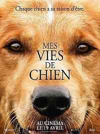 affiche sortie dvd mes vies de chien