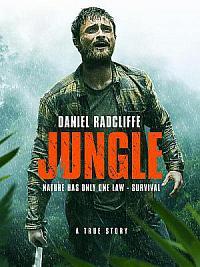 affiche sortie dvd jungle