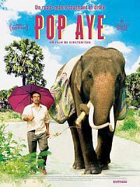 affiche sortie dvd pop aye
