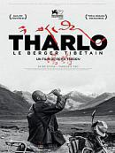 affiche sortie dvd tharlo, le berger tibetain