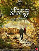 sortie Dvd Blu-ray Le Poirier sauvage
